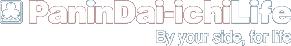 panin logo